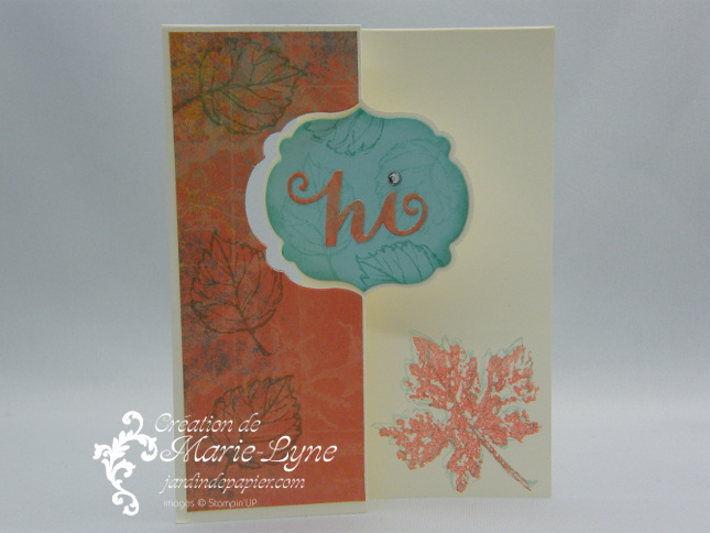Thinlits Carte dépliable, Stampin'UP!, sizzix, Jardin de papier