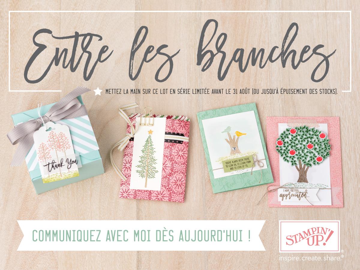 Entre les branches