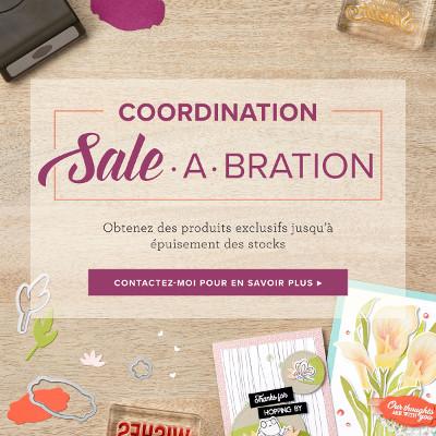 Produits coordonnés Sale-A-Bration