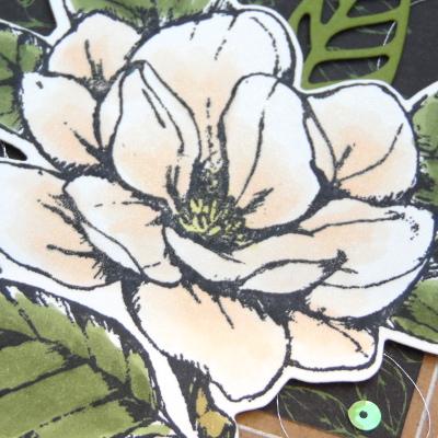 Enveloppes Souvenirs Magnolias