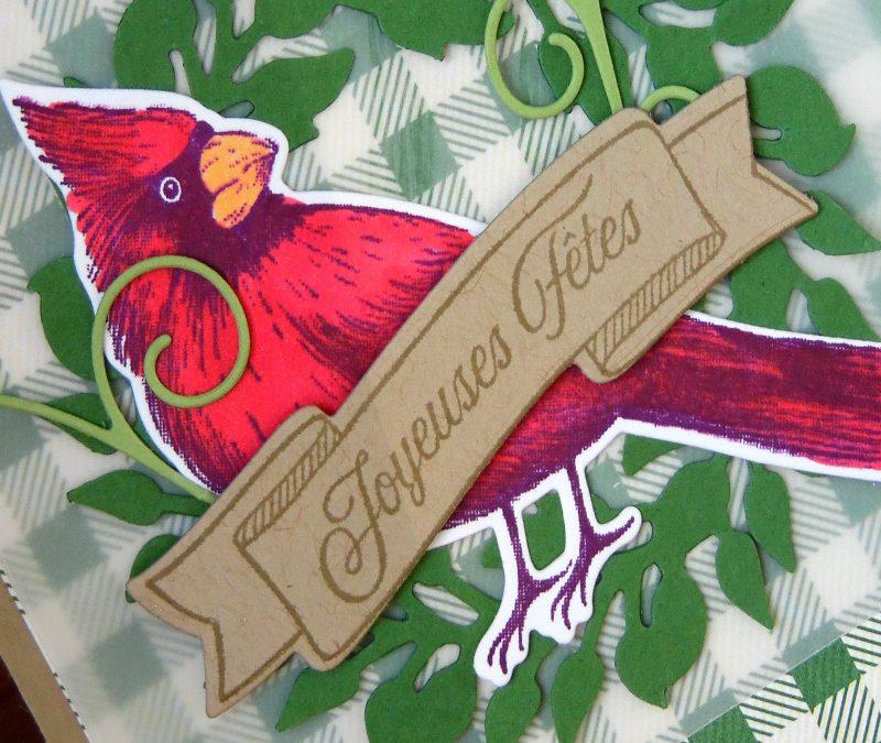Cardinal de Noël